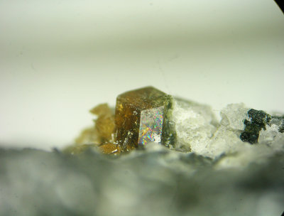 vesuvianite.jpg