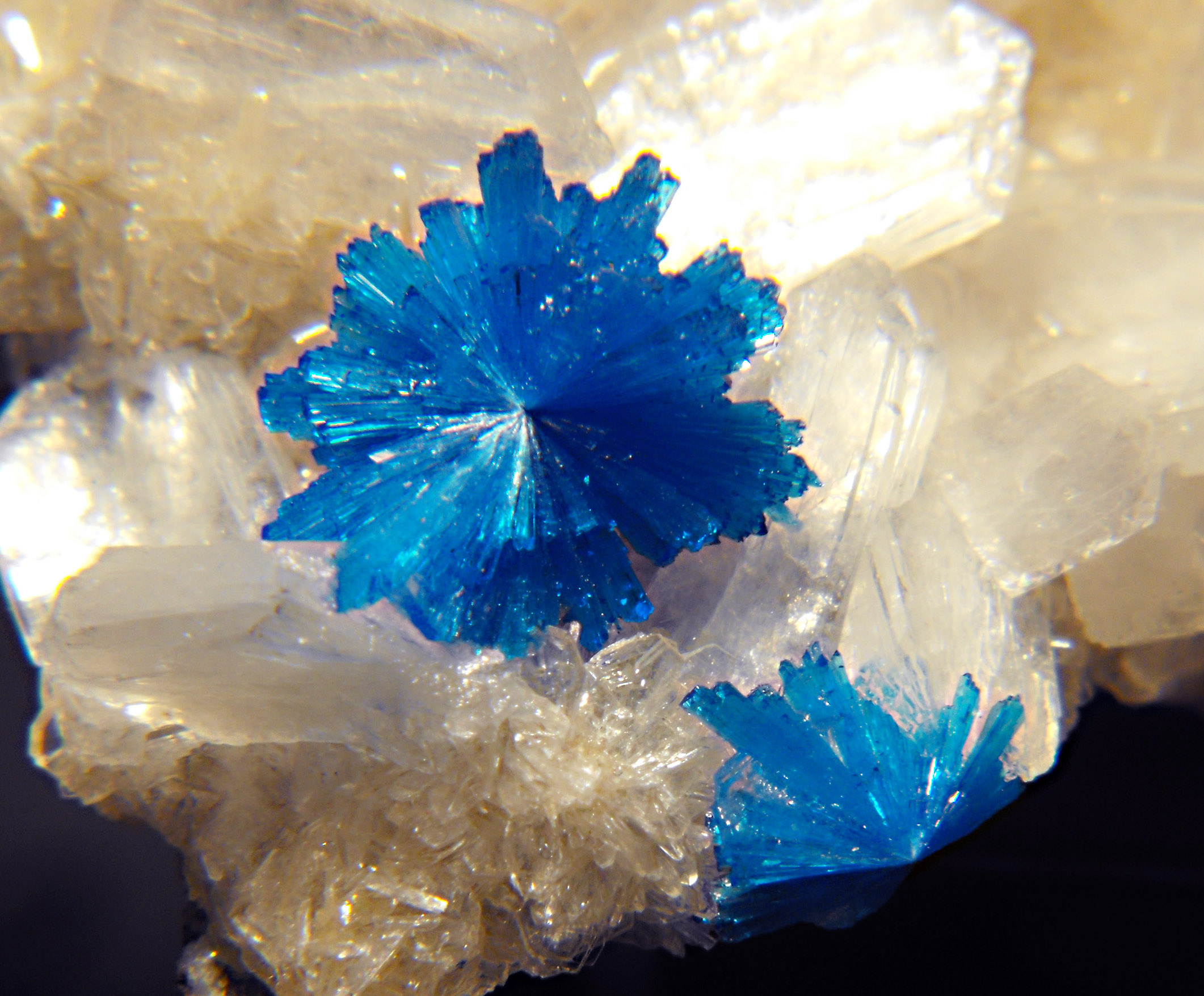 Cavansite Poona) 1.jpg